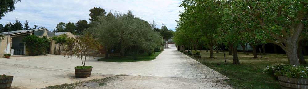 agriturismo-san-lorenzo-panoramica